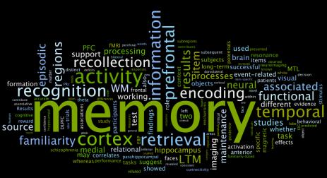 memory wordle